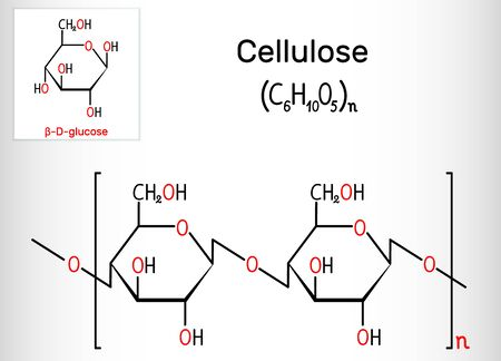 Cellulose polysaccharide molecule. Structural chemical formula. Vector illustration