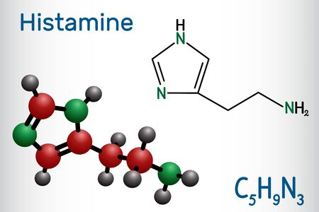Histamine molecule. It is amine, nitrogenous compound, stimulant of gastric secretion, vasodilator, and centrally acting neurotransmitter. Structural chemical formula and molecule model. Vector illustration Illustration