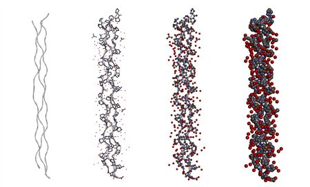 Hydration structure of a triple helix collagen peptide molecule in different models on white background. 3D rendering Stock fotó
