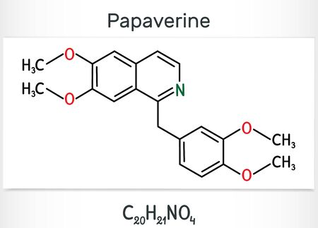 Papaverine molecule. It is opium alkaloid antispasmodic drug. Structural chemical formula. Vector illustration