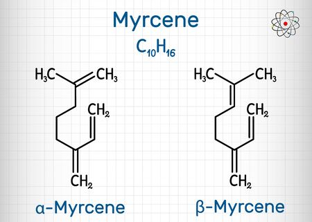 Myrcene, beta and alfa myrcene molecule, is an olefinic natural organic hydrocarbon, monoterpene. Structural chemical formula. Sheet of paper in a cage. Vector illustration
