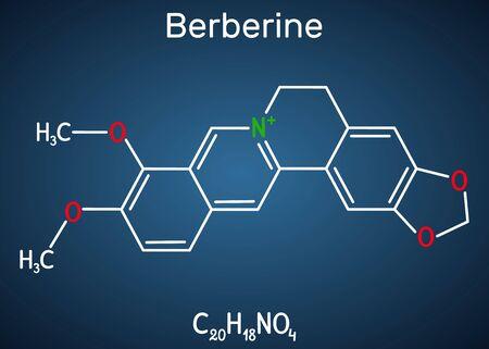 Berberine C20H18NO4, herbal alkaloid molecule. Structural chemical formula on the dark blue background. Vector illustration