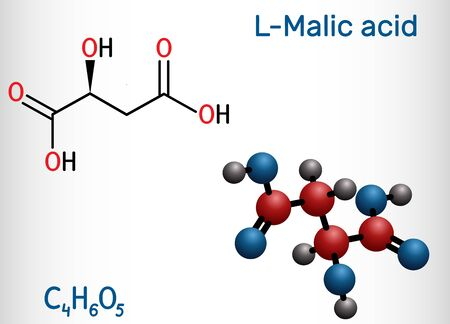 Malic acid C4H6O5 molecule, is dicarboxylic acid. Structural chemical formula and molecule model. Vector illustration