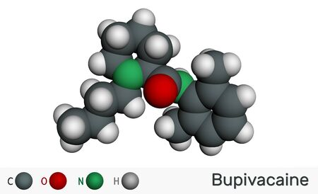 Bupivacaine molecule, is an amide-type, long-acting local anesthetic. Molecular model. 3D rendering