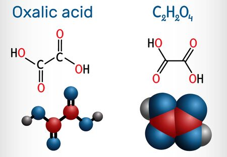 Oxalic acid  C2H2O4 molecule. It is dicarboxylic acid. Structural chemical formula and molecule model. Vector illustration Illustration