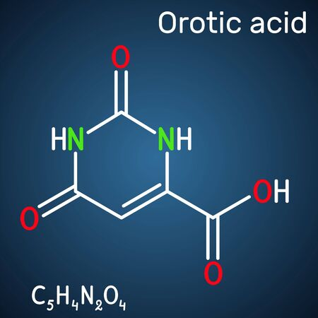 Orotic acid molecule. It is a pyrimidinedione and a carboxylic acid.  Structural chemical formula on the dark blue background. Vector illustration