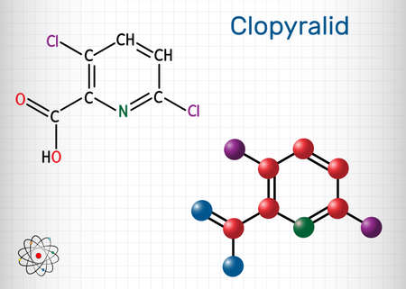 Clopyralid, C6H3Cl2NO2 molecule. It is herbicide, organochlorine pesticide. Structural chemical formula and molecule model. Sheet of paper in a cage. Vector illustration