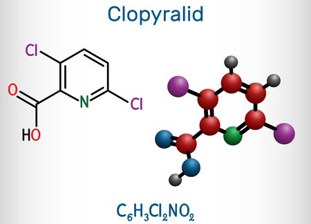 Clopyralid, C6H3Cl2NO2 molecule. It is herbicide, organochlorine pesticide. Structural chemical formula and molecule model. Vector illustration Vettoriali
