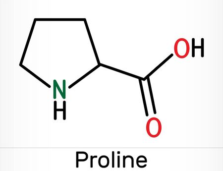 Proline, L - proline, Pro proteinogenic amino acid molecule.  Skeletal chemical formula. Illustration