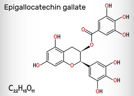 Epigallocatechin gallate (EGCG), is the most abundant catechin in tea. Structural chemical formula. Vector illustration