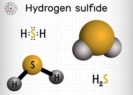 Hydrogen sulfide, hydrosulfuric acid, H2S molecule. It is highly toxic and flammable gas with foul odor of rotten eggs. Sheet of paper in a cage. Vector illustration