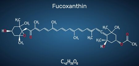 Fucoxanthin, C42H58O6, xanthophyll molecule. It has anticancer, anti-diabetic, anti-oxidative, neuroprotective properties. Structural chemical formula on the dark blue background. Vector illustration Illustration