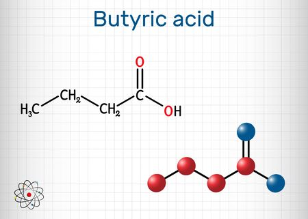 Butyric acid, butanoic acid molecule. Butyrates or butanoates are salts and esters. Sheet of paper in a cage. Structural chemical formula and molecule model. Vector illustration Stock Illustratie