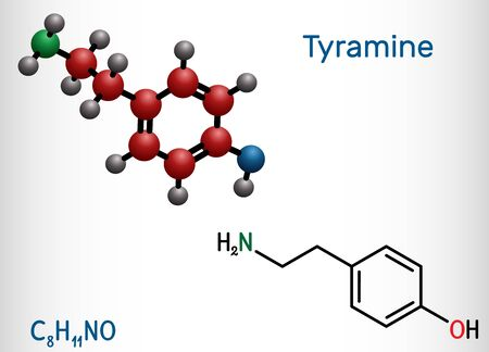 Tyramine, tyramin molecule. It is monoamine compound derived from tyrosine. Structural chemical formula and molecule model. Vector illustration