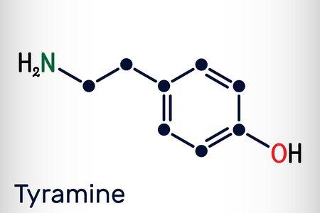 Tyramine, tyramin molecule. It is monoamine compound derived from tyrosine. Skeletal chemical formula. Vector illustration Illustration