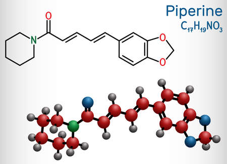 Piperine, C17H19NO3 molecule. It is alkaloid isolated from the plant Piper nigrum. It has role as plant metabolite, food component, human blood serum metabolite. Structural chemical formula and molecule model. Vector illustration