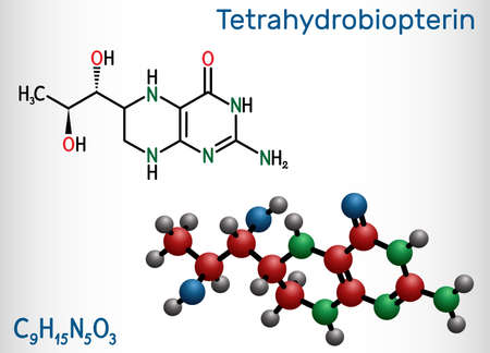 Tetrahydrobiopterin, BH4, THB, sapropterin molecule. It has role as coenzyme, diagnostic agent, human metabolite, cofactor. Structural chemical formula and molecule model. Vector illustration