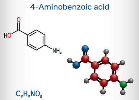 4-Aminobenzoic acid, p-Aminobenzoic acid, PABA molecule. It is essential nutrient for some bacteria and member of vitamin B complex. Structural chemical formula, molecule model. Vector illustration