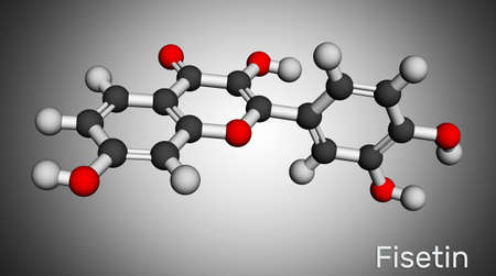 Fisetin molecule. It is plant flavonol from the flavonoid group of polyphenols. Molecular model. 3D rendering 스톡 콘텐츠