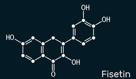 Fisetin molecule. It is plant flavonol from the flavonoid group of polyphenols. Skeletal chemical formula on the dark blue background. Illustration