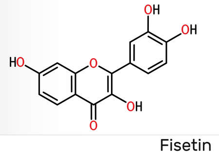 Fisetin molecule. It is plant flavonol from the flavonoid group of polyphenols. Skeletal chemical formula.Illustration 스톡 콘텐츠