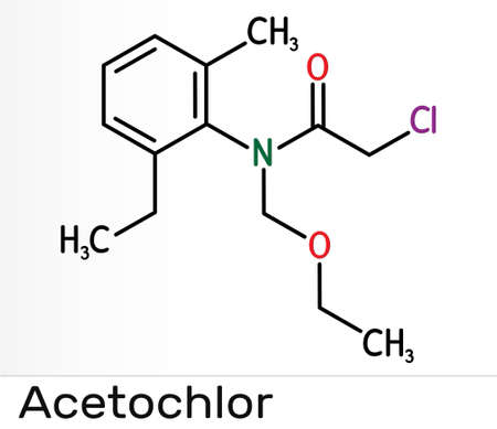 Acetochlor molecule. It is chloroacetanilide, herbicide, a xenobiotic and an environmental contaminant. Skeletal chemical formula. Illustration