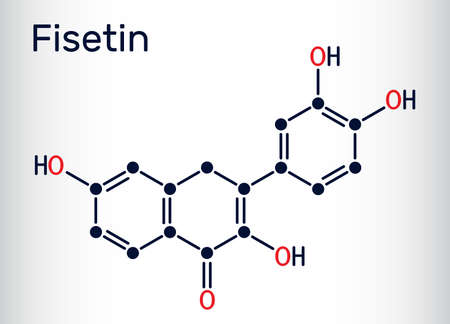 Fisetin molecule. It is plant flavonol from the flavonoid group of polyphenols. Skeletal chemical formula. Vector illustration