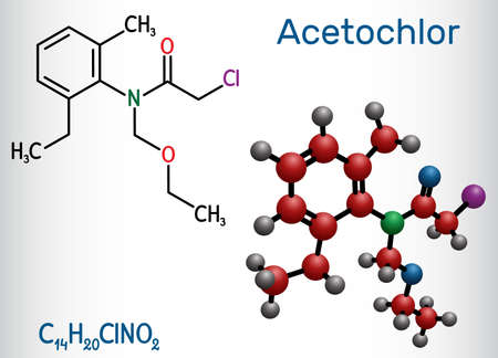 Acetochlor molecule. It is chloroacetanilide, herbicide, a xenobiotic and an environmental contaminant. Structural chemical formula and molecule model. Vector illustration