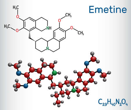 Emetine molecule. It is an antiprotozoal agent and emetic. Structural chemical formula and molecule model. Vector illustration Ilustrace