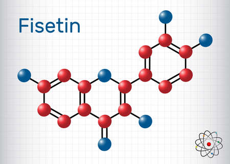 Fisetin molecule. It is plant flavonol from the flavonoid group of polyphenols. Structural chemical formula and molecule model. Sheet of paper in a cage. Vector illustration