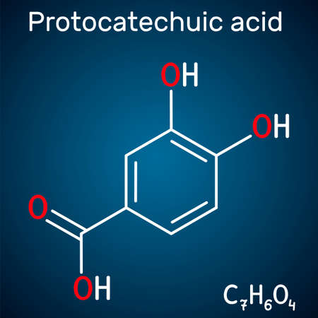 Protocatechuic acid, PCA molecule. It is 3,4-dihydroxybenzoic, phenolic acid, metabolite of antioxidant polyphenols, catechol, is found in green tea. Dark blue background. Vector illustration