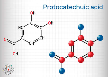 Protocatechuic acid, PCA molecule. It is 3,4-dihydroxybenzoic, phenolic acid, metabolite of antioxidant polyphenols, catechol, is found in green tea. Sheet of paper in a cage. Vector illustration Stock Illustratie