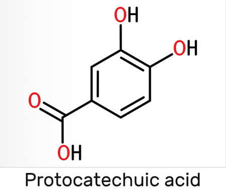 Protocatechuic acid, PCA molecule. It is 3,4-dihydroxybenzoic, phenolic acid, metabolite of antioxidant polyphenols, catechol, is found in green tea. Skeletal chemical formula