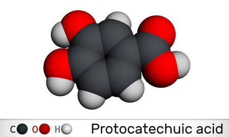 Protocatechuic acid, PCA molecule. It is 3,4-dihydroxybenzoic, phenolic acid, metabolite of antioxidant polyphenols, catechol, is found in green tea. Molecular model