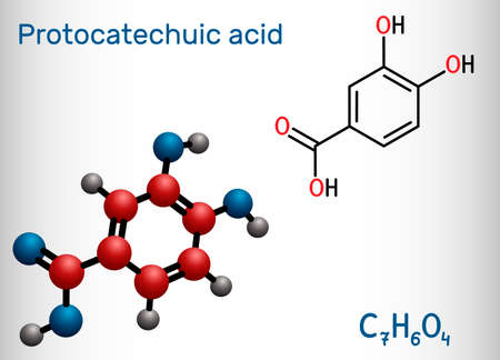 Protocatechuic acid, PCA molecule. It is 3,4-dihydroxybenzoic, phenolic acid, metabolite of antioxidant polyphenols, catechol, is found in green tea. Structural chemical formula, model. Ilustração