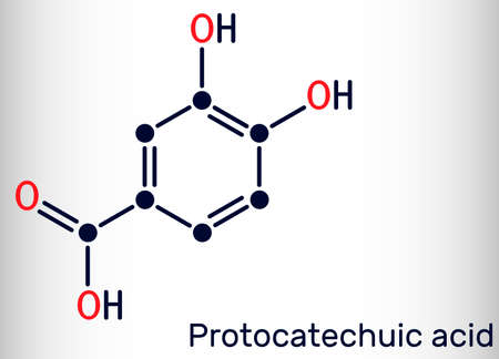 Protocatechuic acid, PCA molecule. It is 3,4-dihydroxybenzoic, phenolic acid, metabolite of antioxidant polyphenols, catechol, is found in green tea. Skeletal chemical formula. Vector illustration