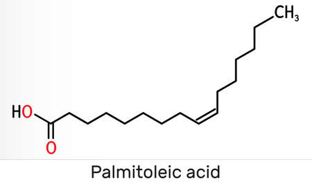 Palmitoleic acid, palmitoleate molecule. It is an omega-7 monounsaturated fatty acid. Skeletal chemical formula. Illustration