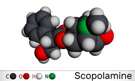 Hyoscine, scopolamine. L-Scopolamine molecule. It is natural plant alkaloid, psychoactive, anticholinergic, antimuscarinic drug. Molecular model. 3D rendering. Illustration Banque d'images - 162628986