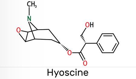 Hyoscine, scopolamine. L-Scopolamine molecule. It is natural plant alkaloid, psychoactive, anticholinergic, antimuscarinic drug. Skeletal chemical formula. Illustration