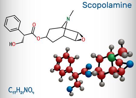 Hyoscine, scopolamine. L-Scopolamine molecule. It is natural plant alkaloid, psychoactive, anticholinergic, antimuscarinic drug. Structural chemical formula and molecule model. Vector illustration Illustration