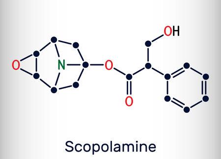 Hyoscine, scopolamine. L-Scopolamine molecule. It is natural plant alkaloid, psychoactive, anticholinergic, antimuscarinic drug. Skeletal chemical formula. Vector illustration Illustration