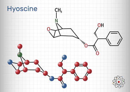 Hyoscine, scopolamine. L-Scopolamine molecule. It is natural plant alkaloid, psychoactive, anticholinergic, antimuscarinic drug. Structural chemical formula and molecule model. Sheet of paper in a cage. Vector illustration