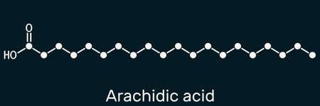 Arachidic acid, eicosanoic, icosanoic acid molecule. It is saturated long-chain fatty acid. Skeletal chemical formula on the dark blue background. Illustration