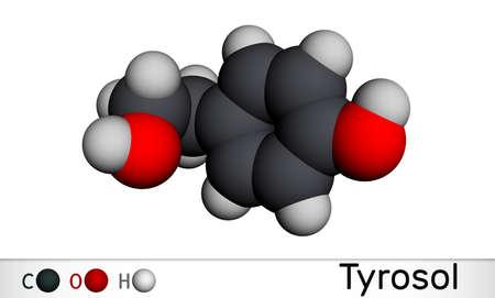 Tyrosol, phenylethanoid, antioxidant molecule. It is an anti-arrhythmia, a cardiovascular drug, a protective agent. Molecular model. 3D rendering. 3D illustration