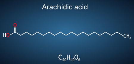 Arachidic acid, eicosanoic, icosanoic acid molecule. It is saturated long-chain fatty acid. Structural chemical formula on the dark blue background. Vector illustration
