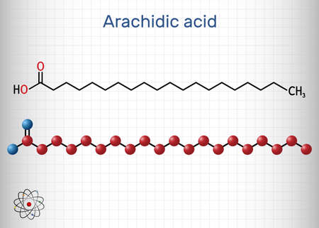 Arachidic acid, eicosanoic, icosanoic acid molecule. It is saturated long-chain fatty acid. Sheet of paper in a cage. Vector illustration