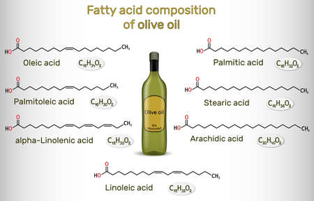 Fatty acid composition of olive oil. Chemical compounds: oleic, linoleic, palmitic, stearic, palmitoleic, alpha-linolenic, arachidic acid. Structural chemical formulas. Vector illustration