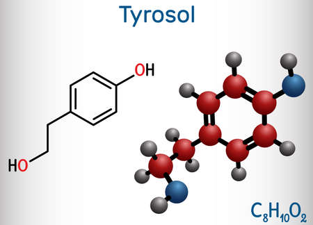 Tyrosol, phenylethanoid, antioxidant molecule. It is an anti-arrhythmia, a cardiovascular drug, a protective agent. Structural chemical formula and molecule model. Vector illustration Banque d'images - 163115385