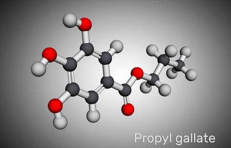 Propyl gallate, N-Propyl gallate molecule. It is antioxidant, food additive, E310. Molecular model. 3D rendering. 3D illustration