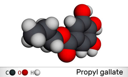 Propyl gallate, N-Propyl gallate molecule. It is antioxidant, food additive, E310. Molecular model. 3D rendering. 3D illustration